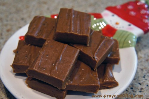Peanut Butter Fudge and a Cookbook Giveaway!