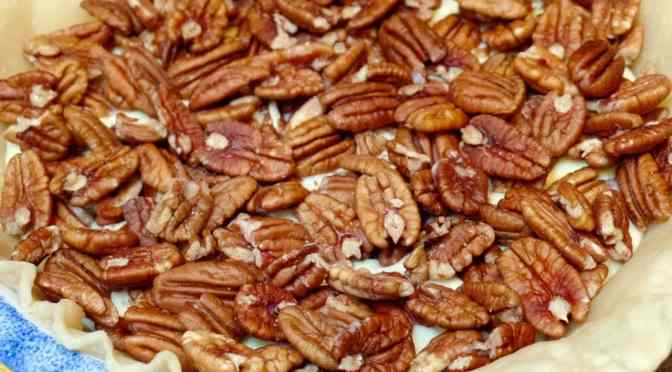Pecans Layered in the pie crust