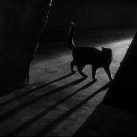 The Black Cat (1934) Review