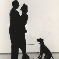 Announcing THOUGHTS ON THE THIN MAN book project!