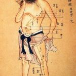 acupunture diagram