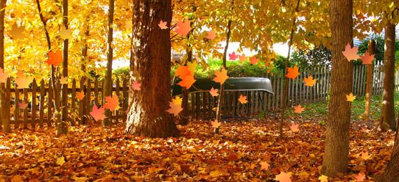Fall Wallpaper With Pumpkins Premium Autumn Inspired Graphics Premiumcoding