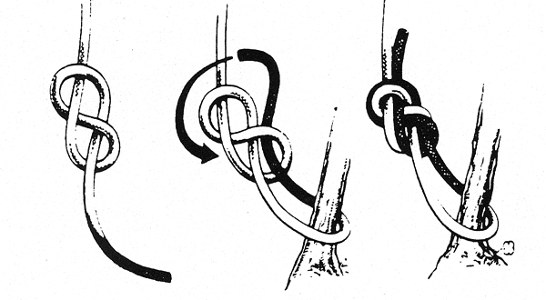 diagram of how to tie a stein or stone knot often used in
