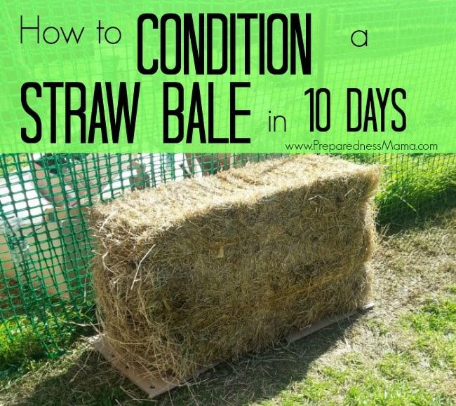 How To Condition Straw Bales   Preparednessmama