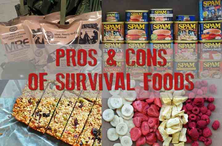 Pros & Cons of survival foods