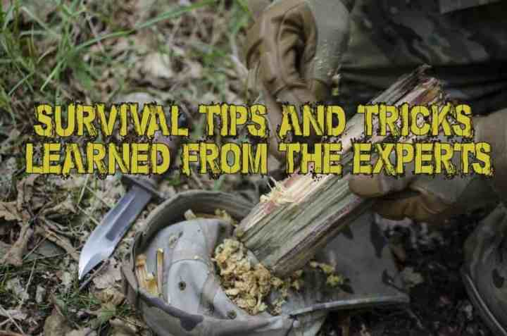 Survival Tips And Tricks Learned From The Experts