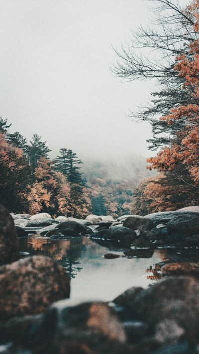 15 Gorgeous Happy Fall iPhone X Wallpapers   Preppy Wallpapers