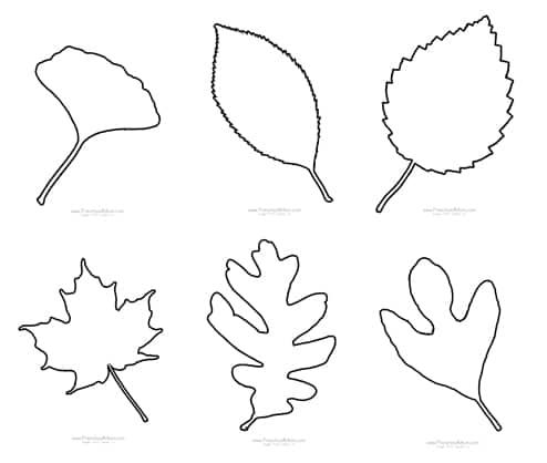 Fall Leaf Preschool Printables - Preschool Mom
