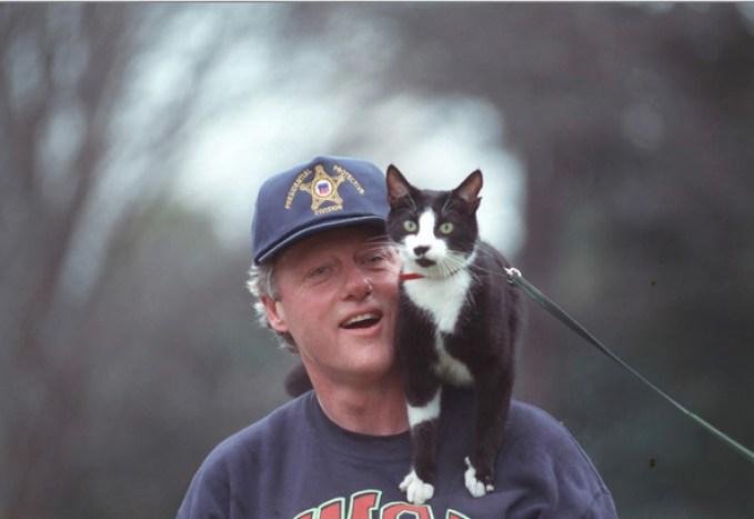 President Clinton and Socks go for a walk.
