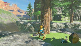 The-Legend-of-Zelda-Breath-of-the-Wild-(c)-2017-Nintendo-(19)