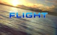 Review: Microsoft Flight