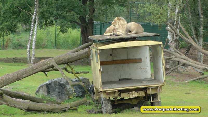 Safaripark Beekse Bergen korting trip report blog 8