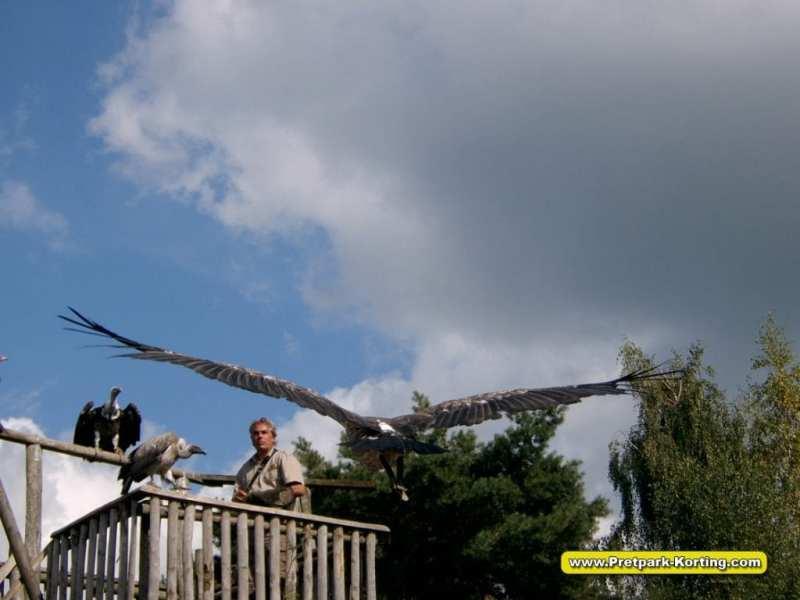 Safaripark Beekse Bergen korting trip report blog 2