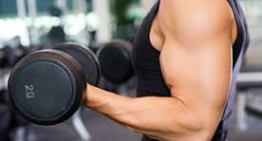 Eigenschaften von Kraftsport Teil 2