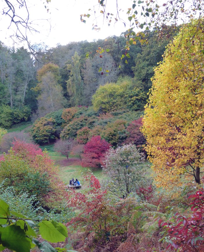 couleurs automne angleterre