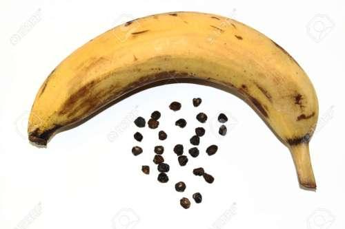 Medium Of Banana With Seeds