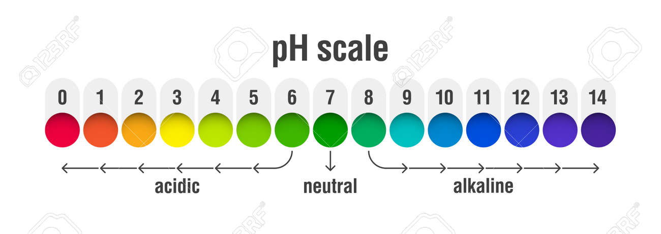 PH Value Scale Chart For Acid And Alkaline Solutions, Acid-base
