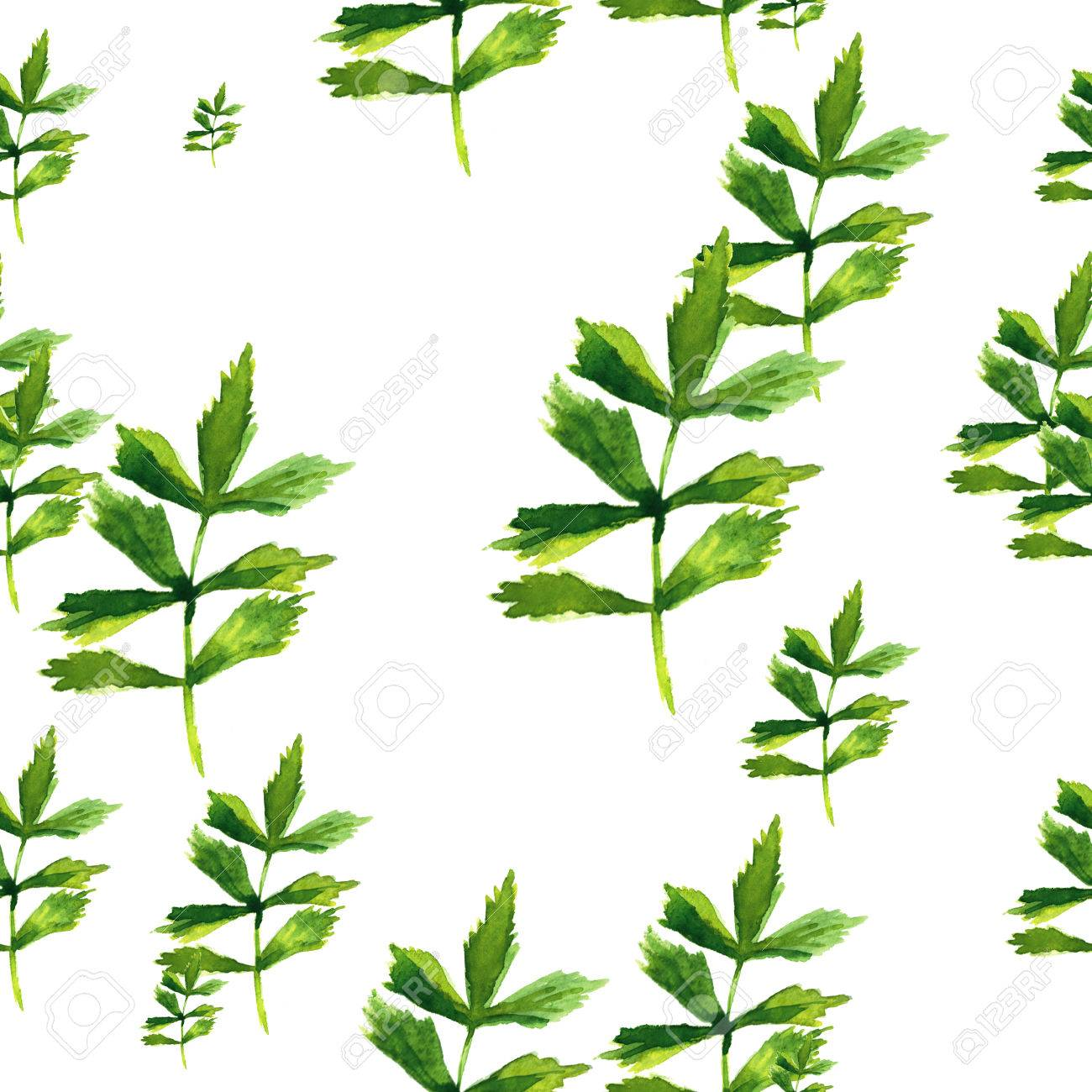 Herbal Wallpaper Beautiful Nature Background Seamless Pattern With Herbs And Leaves