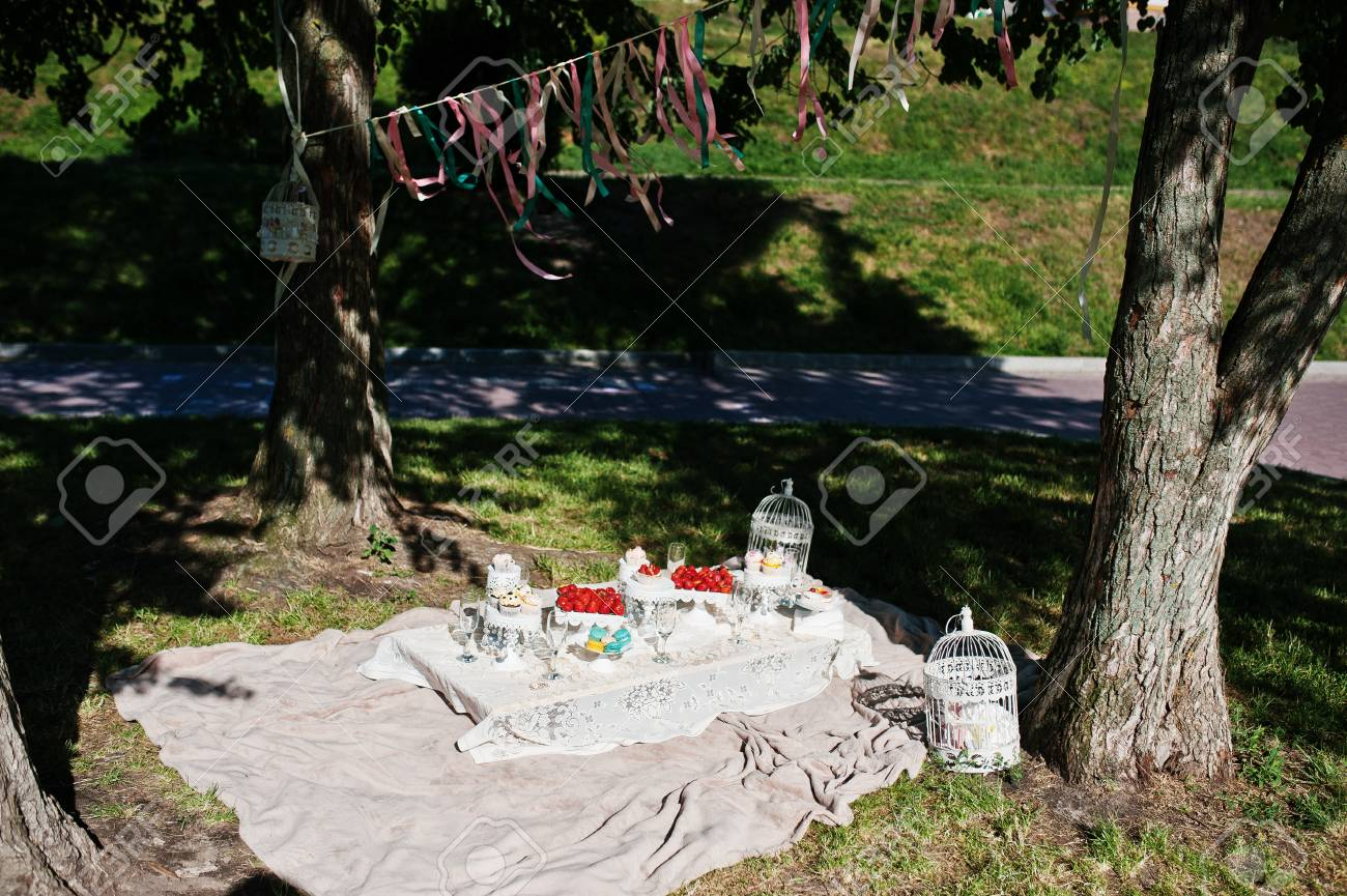 Picnic Decor Picnic Table With Decor And Colored Ribbons On Grass Near Trees