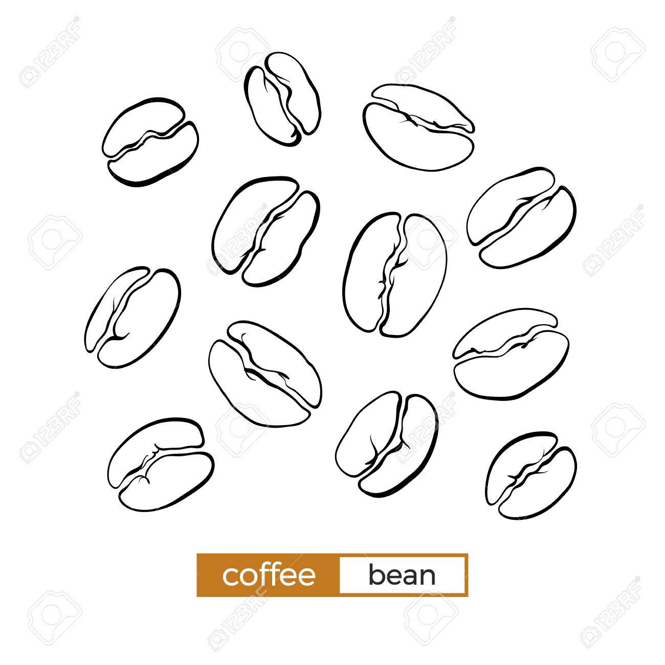 Grain Bio Set Of Different Coffee Beans On White Background Organic Food