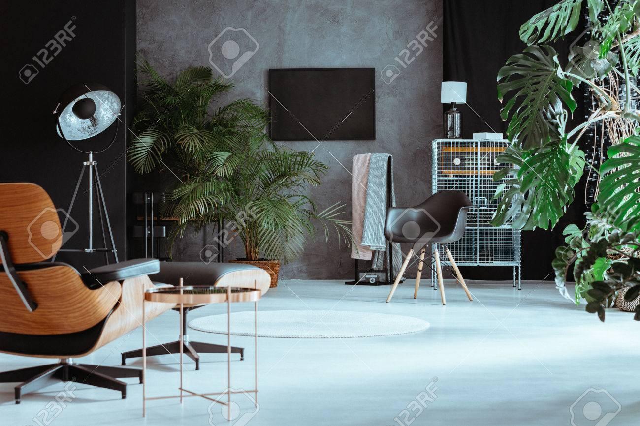 offener raum im grossen wohnzimmer mit exotischen pflanzen und retro mobeln