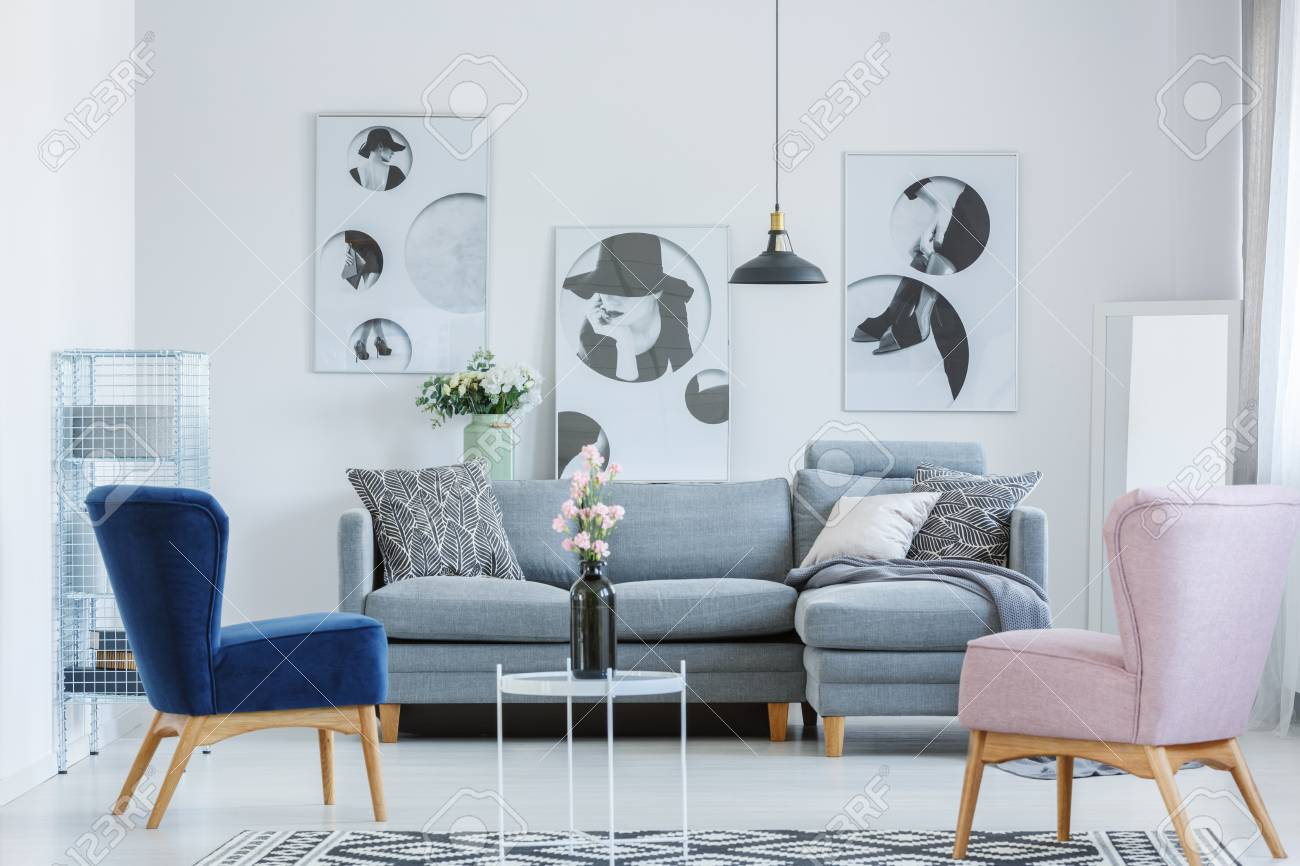 Living Room With Grey Sofa Pink And Blue Armchairs In Cozy Living Room With Grey Sofa And