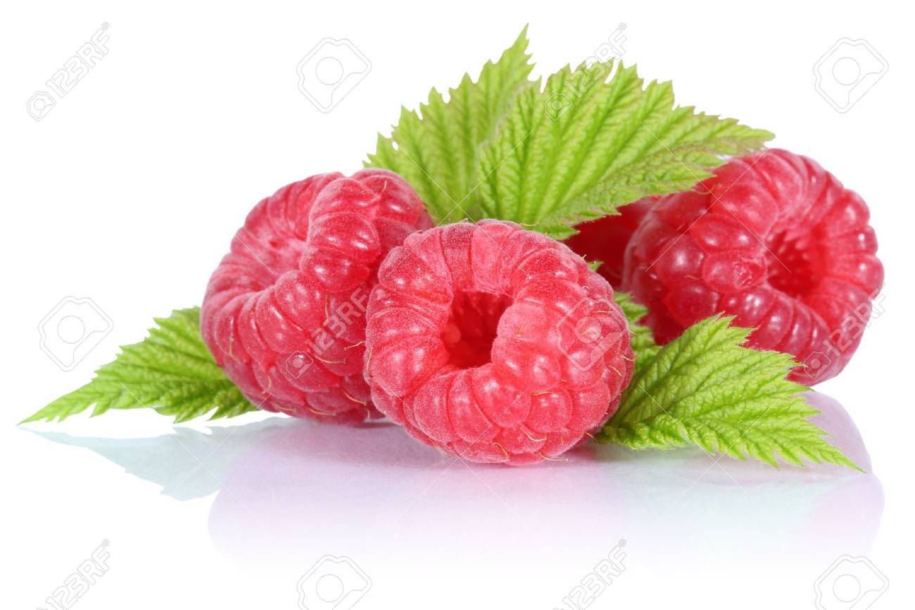 Himbeeren Bilder Stock Photo