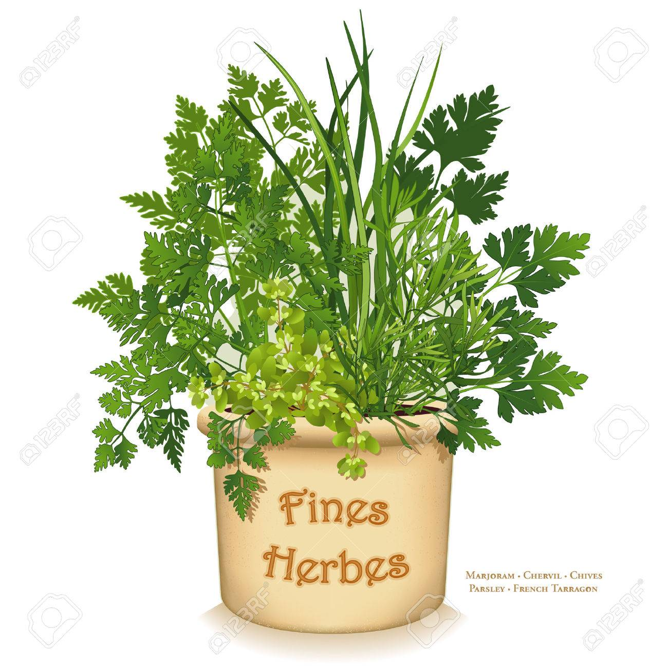 Planter For Herbs Fines Herbes Garden Planter