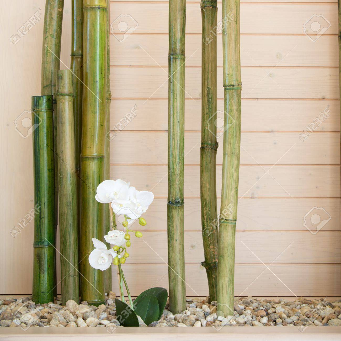 Bambus Dekoration Deko Fur Grosse Bodenvasen