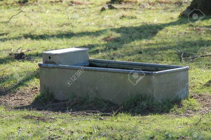 Large Of Metal Water Trough