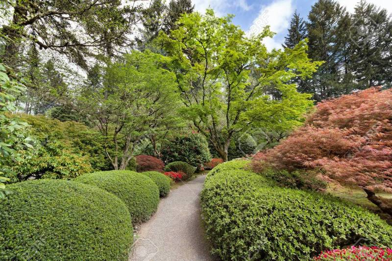 Large Of Japanese Garden Plants