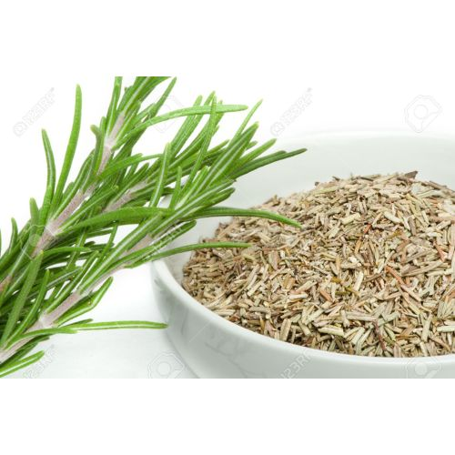 Medium Crop Of Sprig Of Rosemary