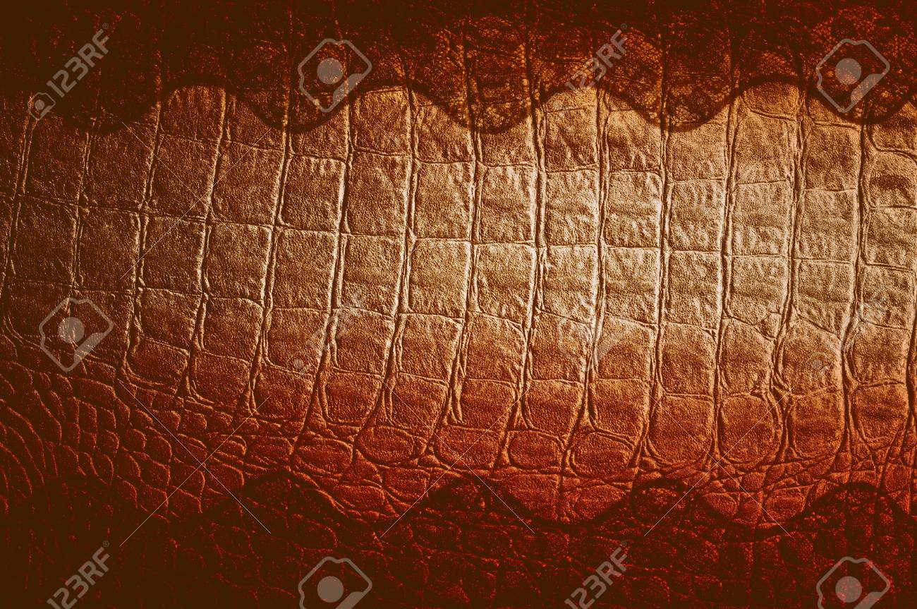 Free Photography Stock Skin Crocodile Black Texture Photography Studio
