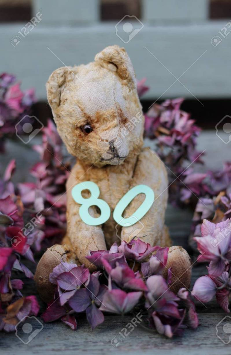 Large Of Teddy Bear Cut