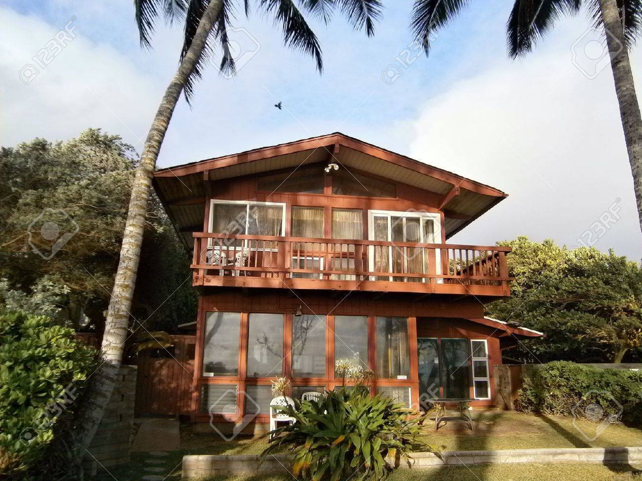 Engrossing Tall Coconut Trees On Hawaii Two Story House Stock Photo Two Story Red Beach House Bird Flying Two Story Red Beach House Spanish Two Story Houseboat Tall Coconut Trees On curbed Two Story House