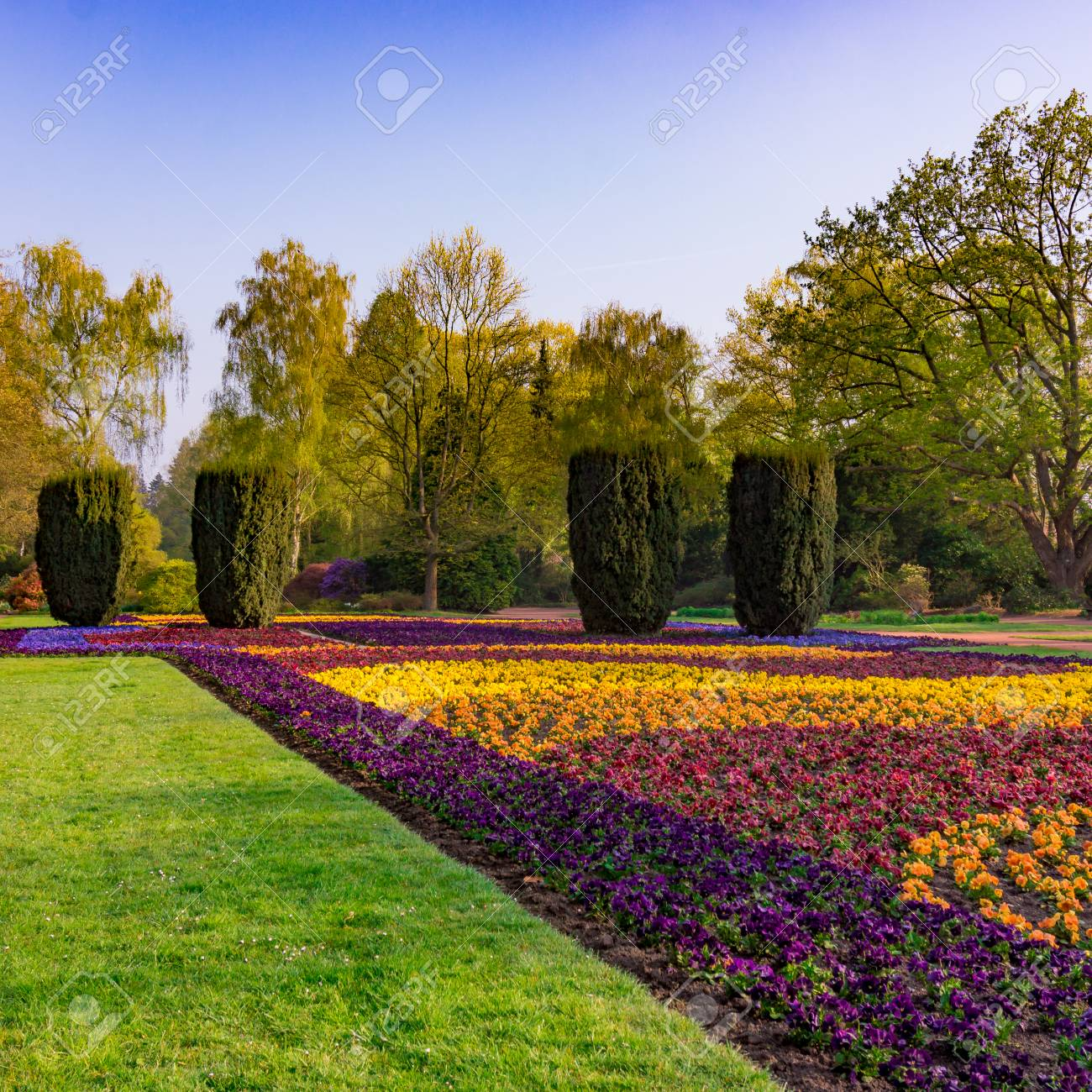 Image Jardin Amenage