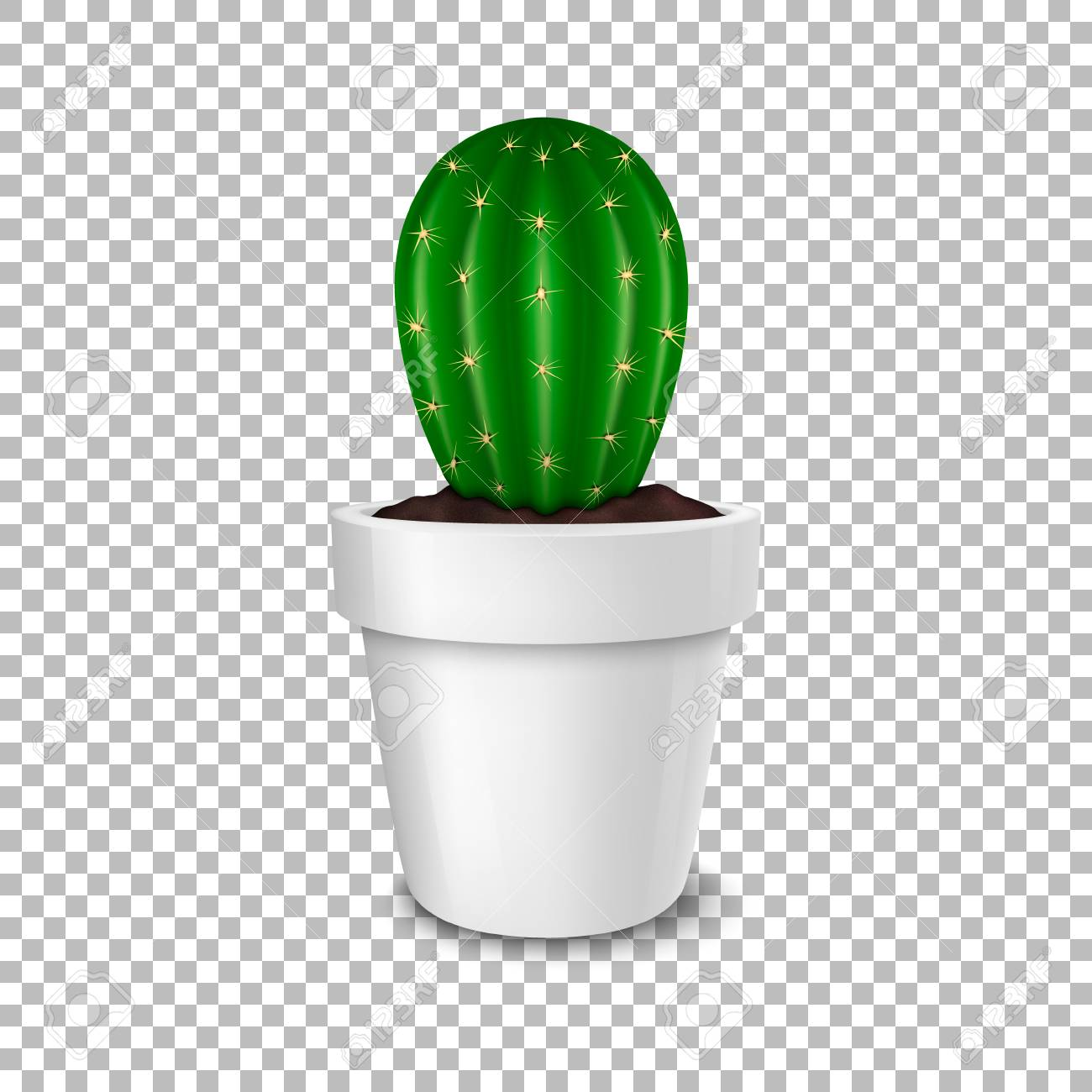 Cactus Planting Pots Realistic Decorative Cactus Plant In White Flower Pot Icon Closeup