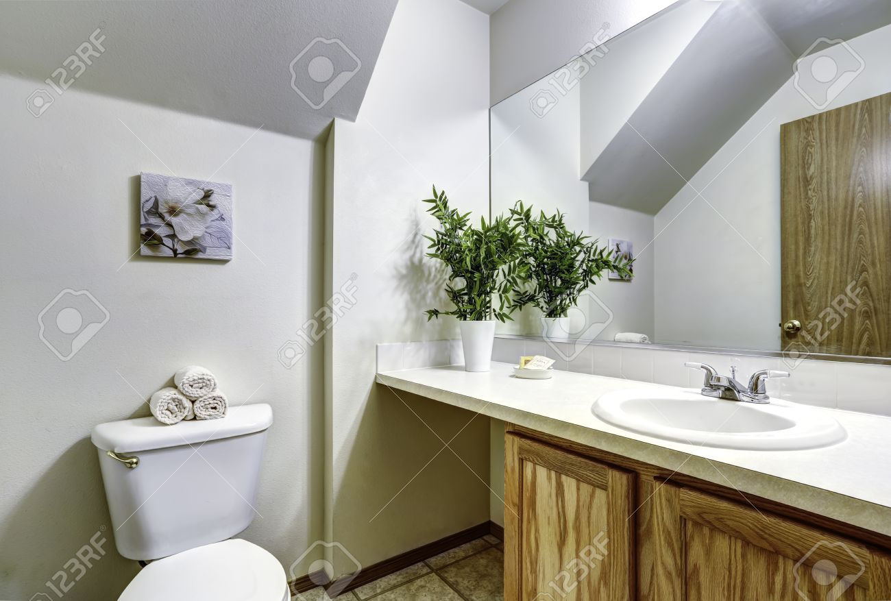 Bathroom Corner Mirror Bathroom Corner With Vaulted Ceiling And Wooden Cabinet Decorated
