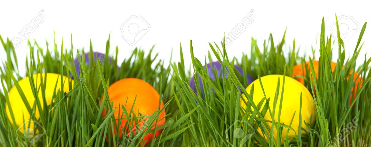 Easter Border Easter Eggs In Green Grass Over White Background