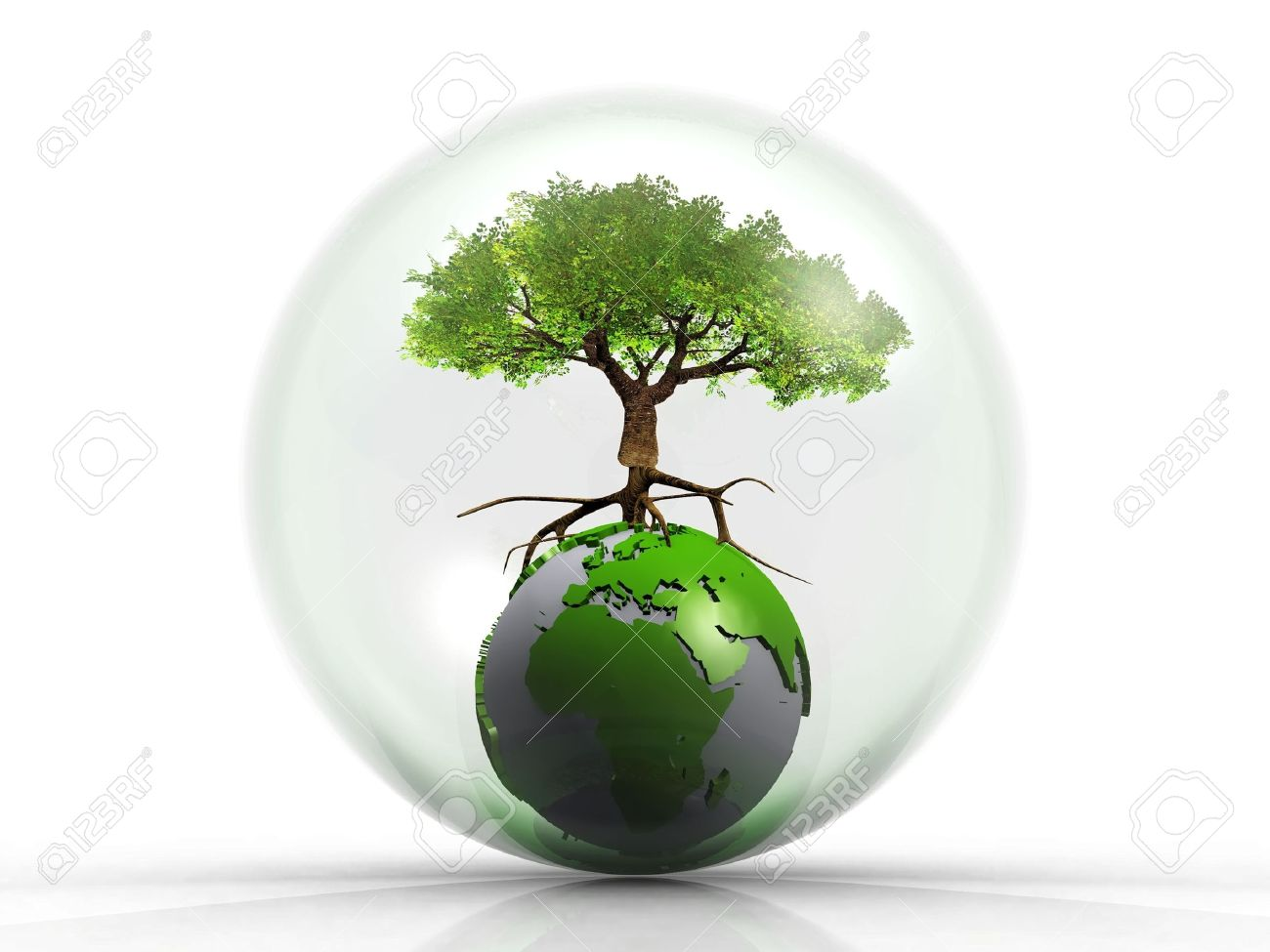 Bonsai Aarde Tree On The Earth In A Bubble