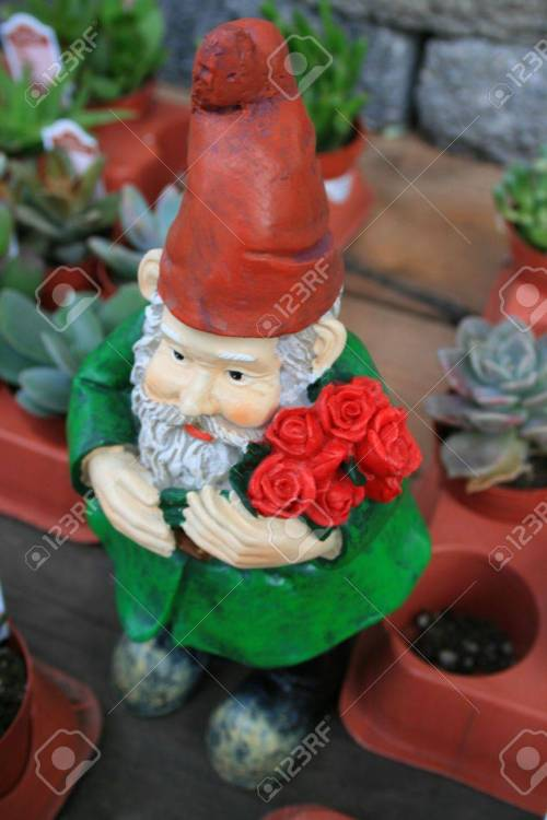 Medium Of Small Garden Gnome