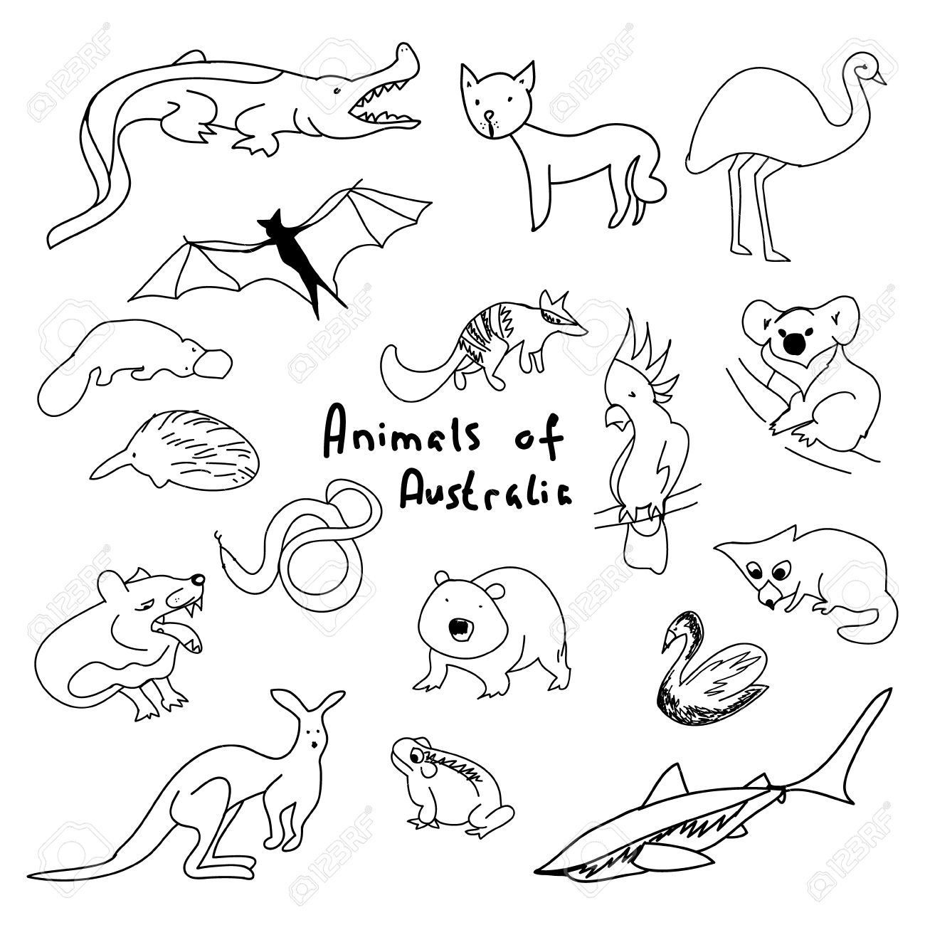 Australian Animals Drawings Animals Of Australia A Set Of Simple Drawings Cartoon Animals