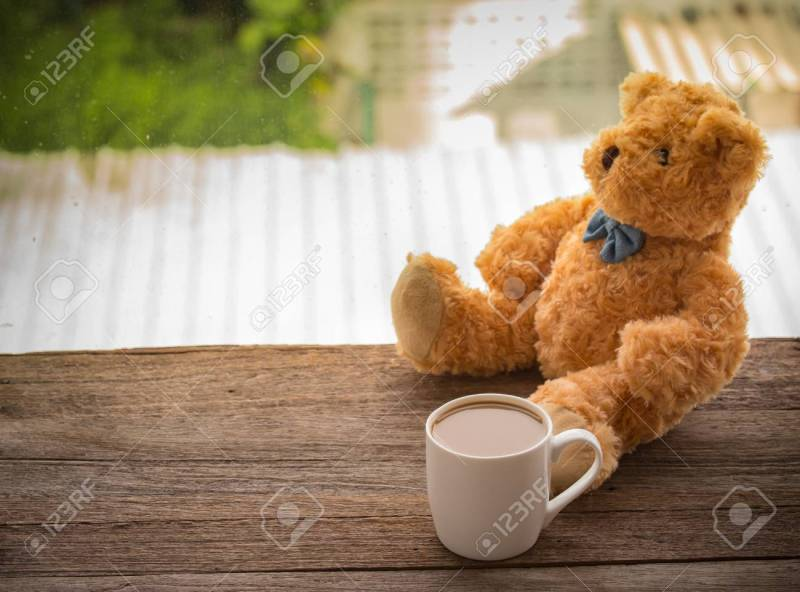 Large Of Bear Coffee Cup