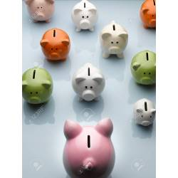 Small Crop Of Large Piggy Bank