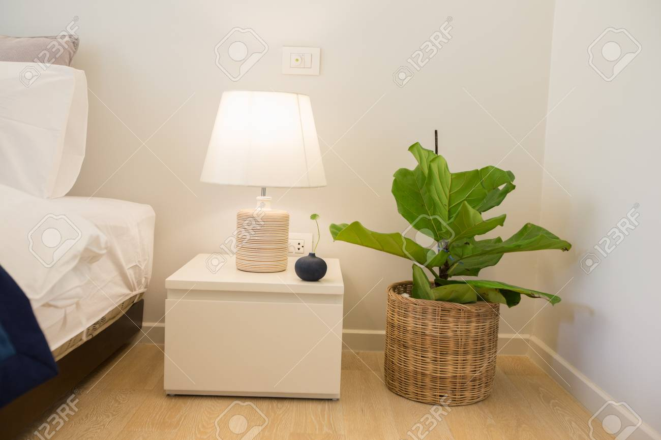 Lamp Plant Lamp On Bedside Table And Plant Pot For Decorative In Bedroom