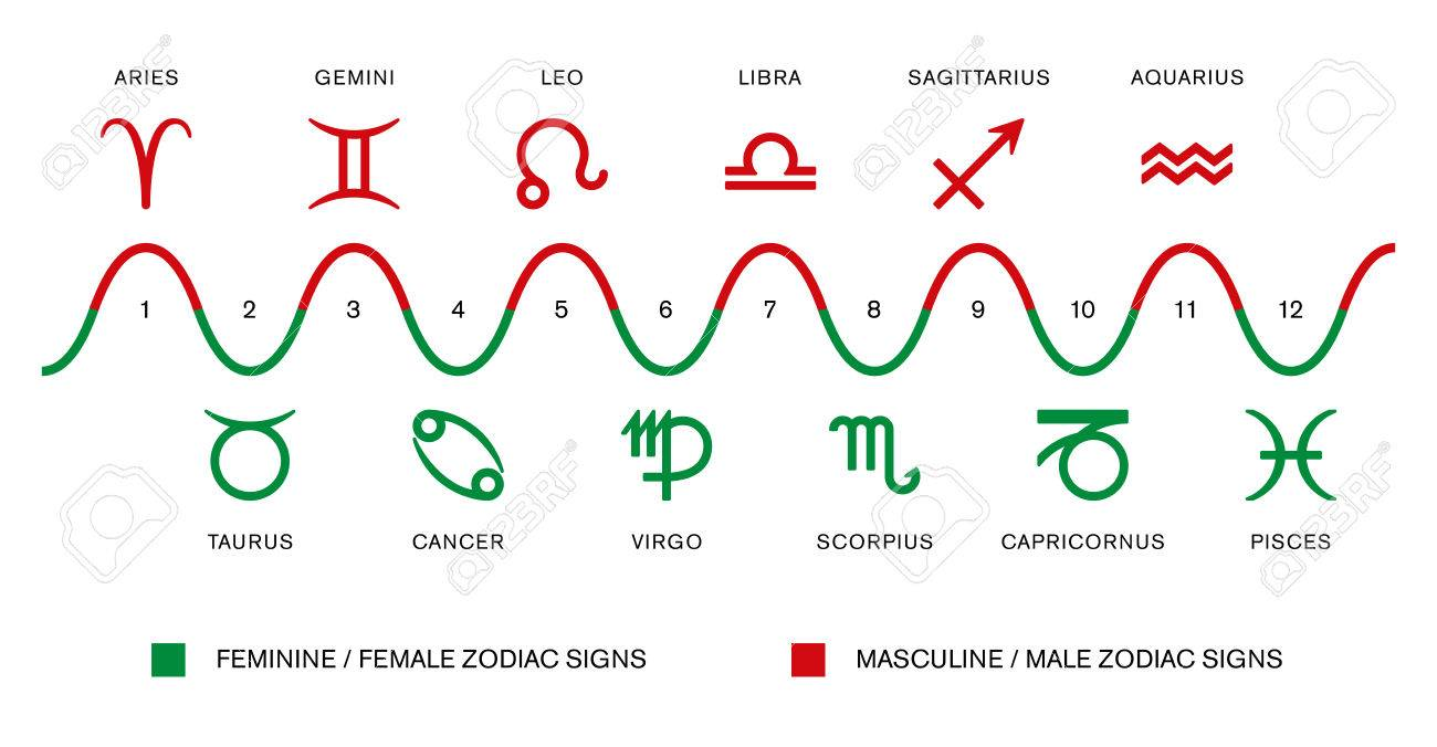 Zodiac Signs The Polarity Of The Zodiac Signs Masculine Male And Feminine