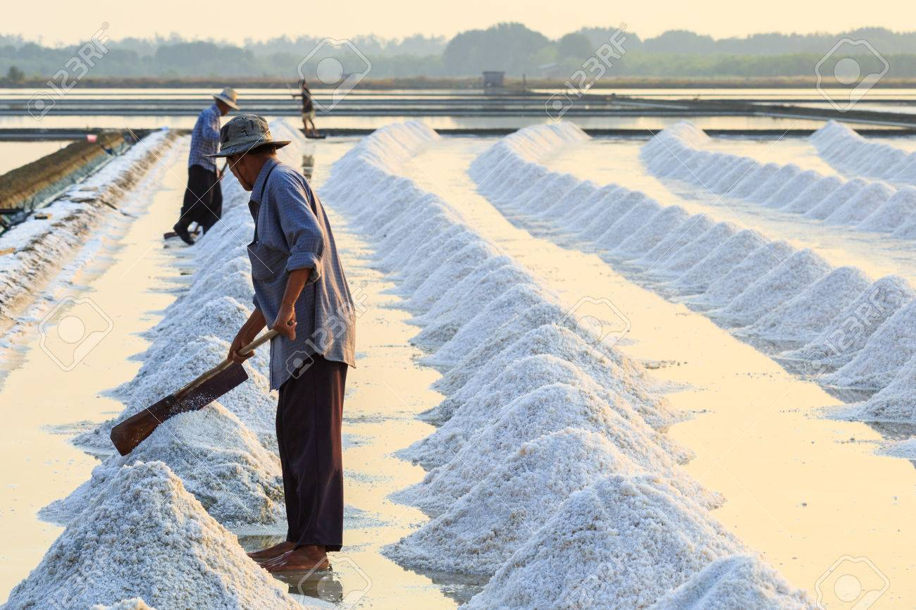 Picturesque Sea Salt How To Make Salted Eggs How To Make Salt Water A Field Prepared Harvest Saline On Man Make A Heap Harvest A Field Prepared Man Make A Heap Sea Salt photos How To Make Salt