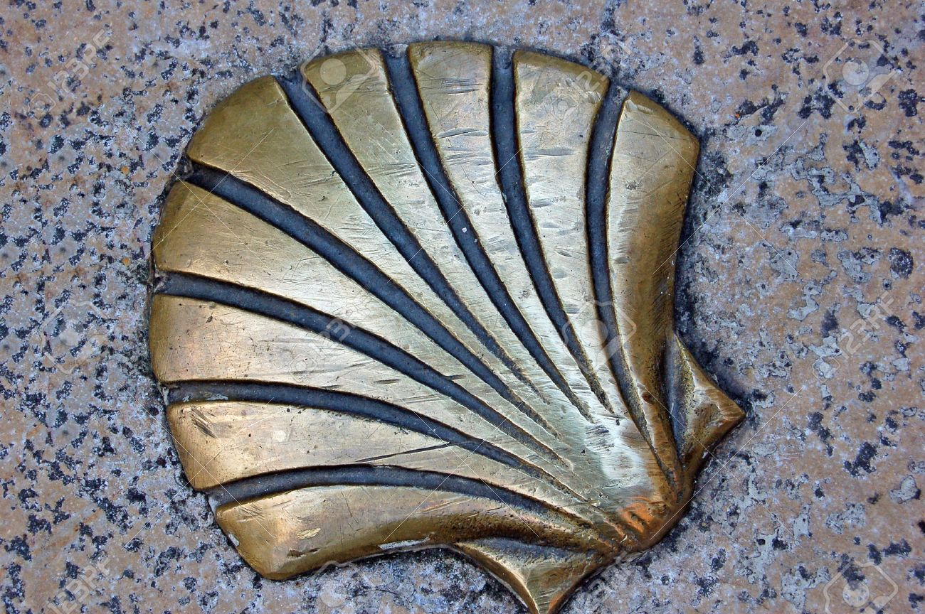 Camino Santiago Shell One Of The Pilgrim S Shells That Marks The Ground In The