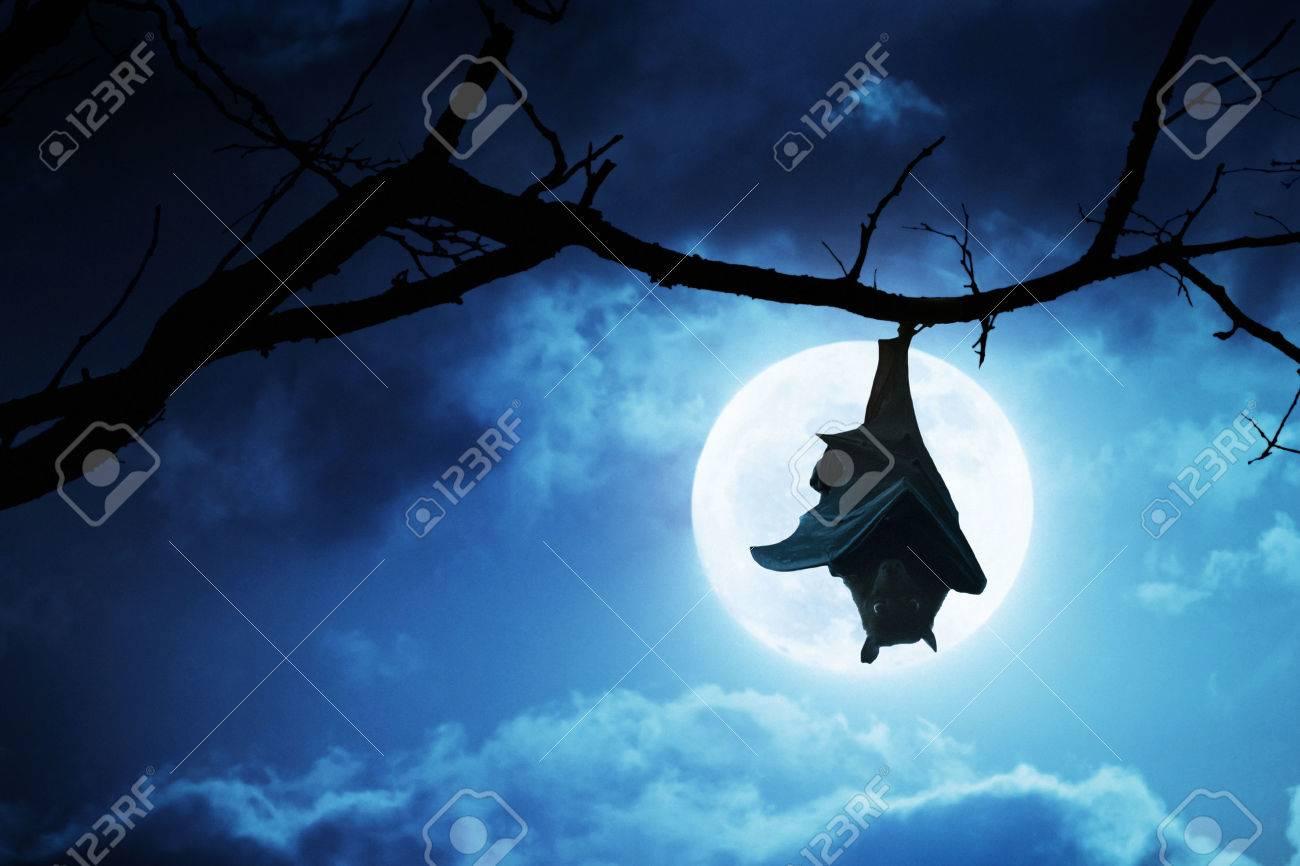 Fullsize Of Creepy Halloween Pictures