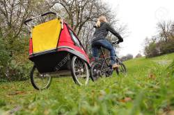 Small Of Child Bike Trailer